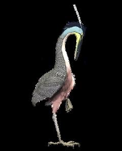 bird egret pink onelegged freetoedit