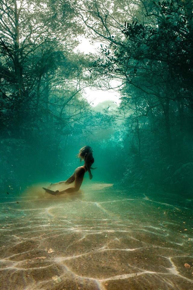 exploring the surface                      #photomanipulation #manipulation #sureal #surrealism #surrealart #art #swimming #underwater #forest #underwaterforest