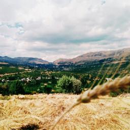 freetoedit karaman photography summer nature