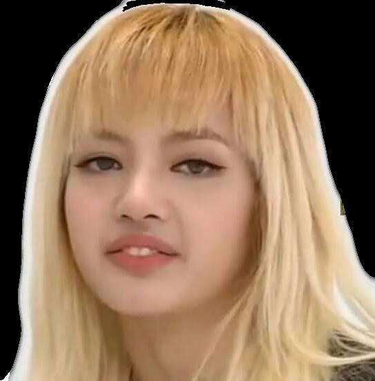 Lisa Bp Blackpink Blackpinklisa Yg Derp Face Funny Kpop