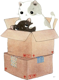box kitten cat freetoedit scprettybox