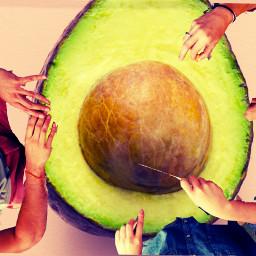 freetoedit ircavocadoday avocadoday