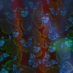 freetoedit butterflies night