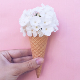 pcicecream icecream dailychallenge summer pink freetoedit