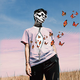 freetoedit butterflies photography people