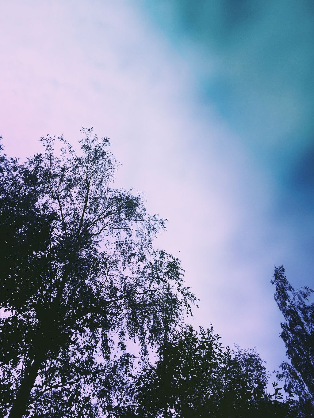 Aesthetic aesthetictumblr nature sky tumblr mypic freetoedit