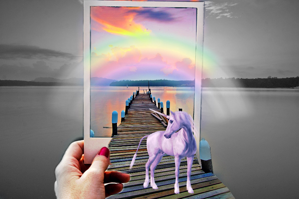 #freetoedit #rainbow #unicornsarereal #polaroid