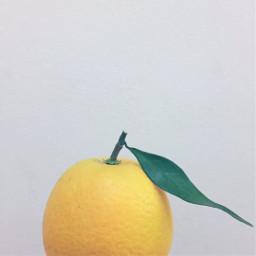 pcfruits fruits freetoedit