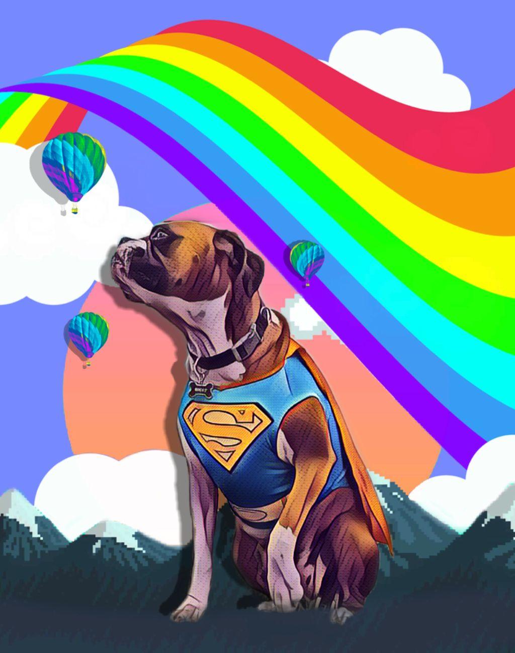 #freetoedit #dog #background #cuterainbow #vaporwave #popart #stickers #magiceffects #picsarteffects #picsart #remixed #remixme #remixit