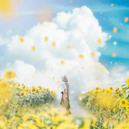summer sunflower yellow japan photoshop