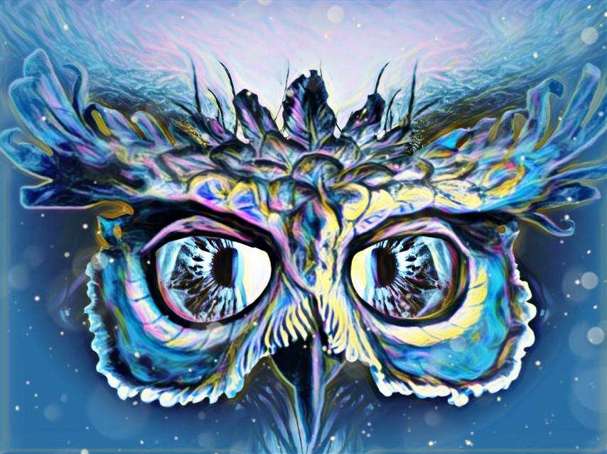 #freetoedit #eye  #mirrored  #owl #magic #highlightmagiceffect #dustbrush