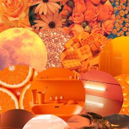 freetoedit orange orangeaesthetic orangewallpaper