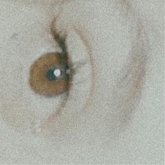 1994zey