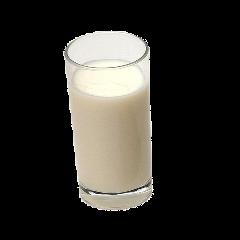 milk drink niche moodboard dairy