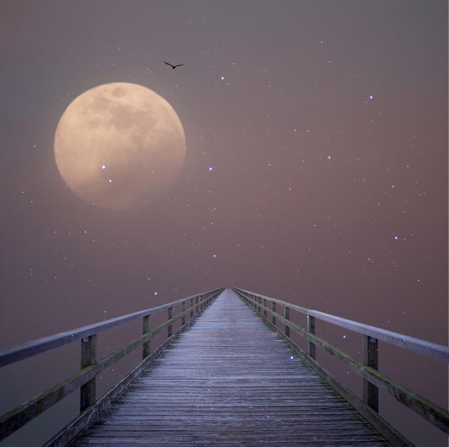 Light the way  #edit #doubleexposure #moon #stars #freetoedit