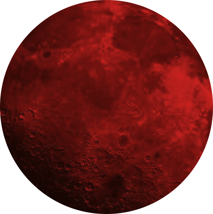 moon circle redmoon red
