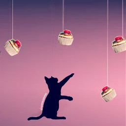 freetoedit irccupcakeday cupcakeday cat madewithpicsart