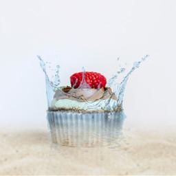 irccupcakeday cupcakeday freetoedit
