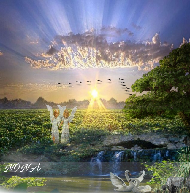 Nature and angels