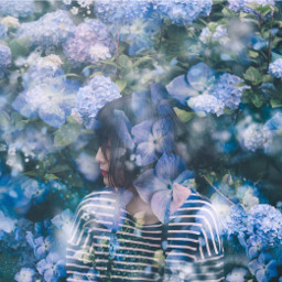 flower photoshop japan girl