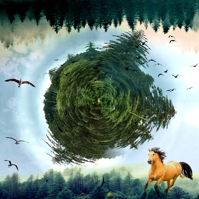 #freetoedit #horse #fantasy