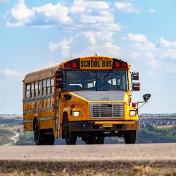 freetoedit bus school schoolbus yellowbus