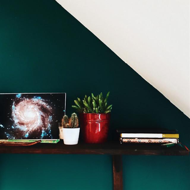 #room #decoration #decor #spirit #spiritualcreativity #roomdecor #roomdesign #plant #plants #cactus #book #booklover #sky #space #germany #leipzig
