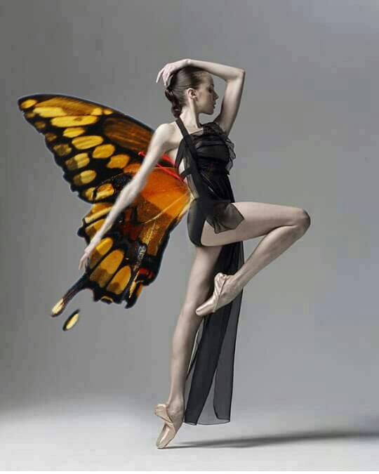 #freetoedit #animalhybrid  #butterfly #gymnastics #girl #remixit