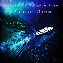 freetoedit carpediem boat whale life