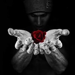 freetoedit boy rox fower hand