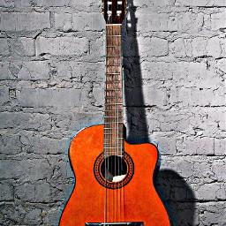 guitar guitarist guitars guitarlove guitarplayer