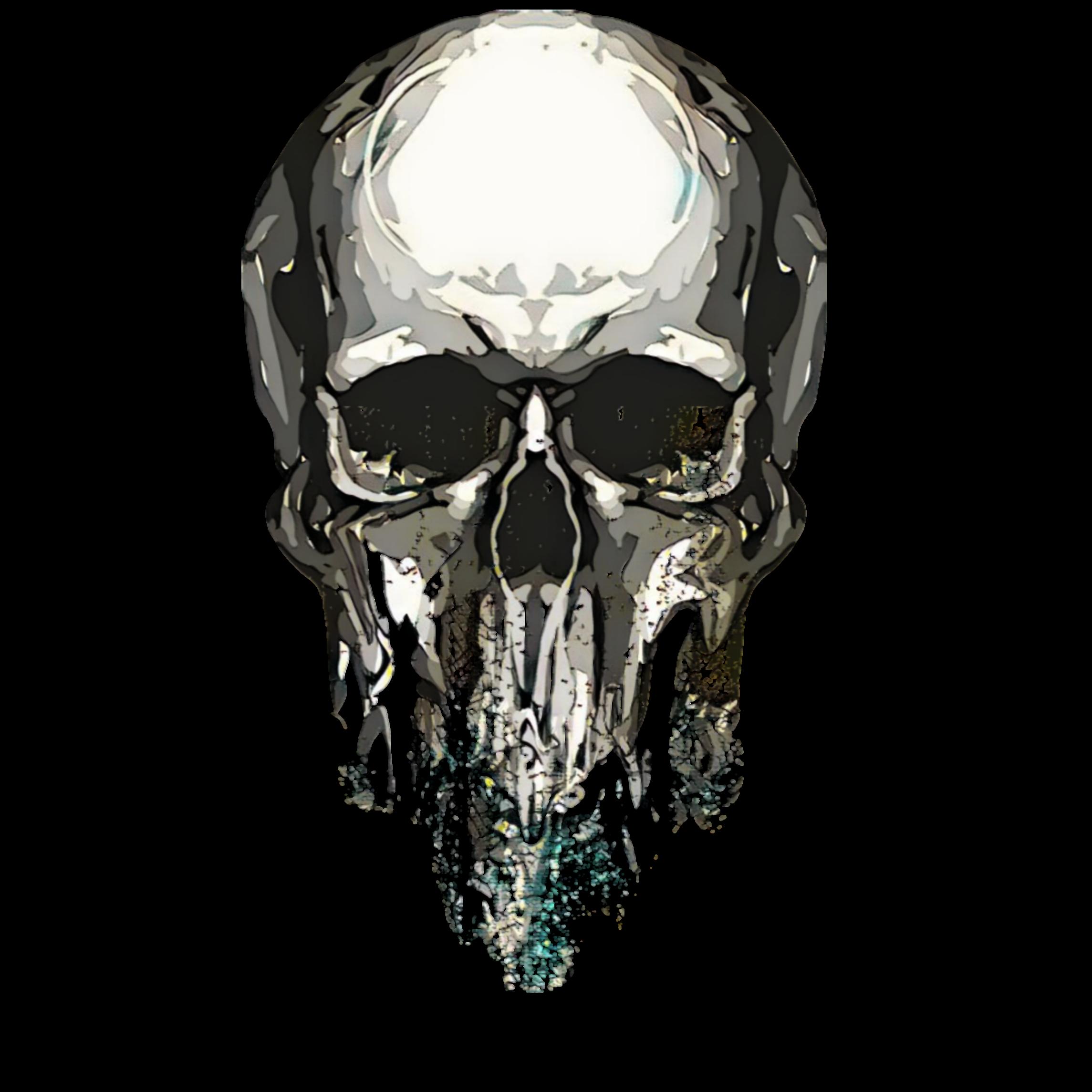 картинки на прозрачном фоне черепа создания гармоничного дизайна