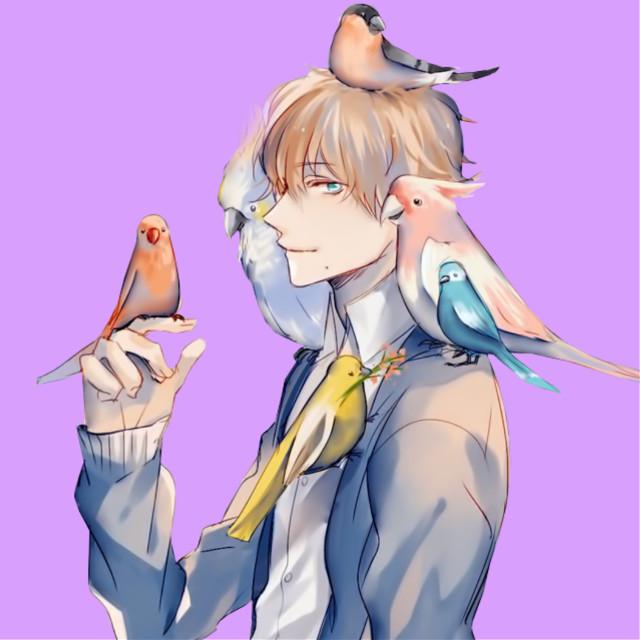 Another easy edit. #freetoedit #animeboy #boyanime #boy #anime #birds #animeboybird #animeboyfreetoedit #animefreetoedit