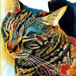 freetoedit catsofpicsart catstickers pleinairmagiceffect