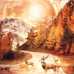 freetoedit fantasy surreal deer autumncolors