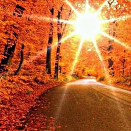 autumnsunset freetoedit background remxit autumn