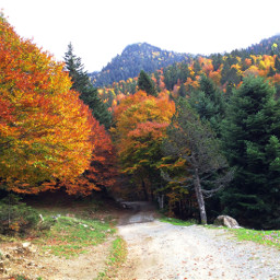 photography nature autumn pyrenees mountains freetoedit