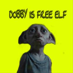 freetoedit dobby dobbyisafreeelf elf free