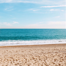 freetoedit nature beautifulweather beachscenery sunnyday