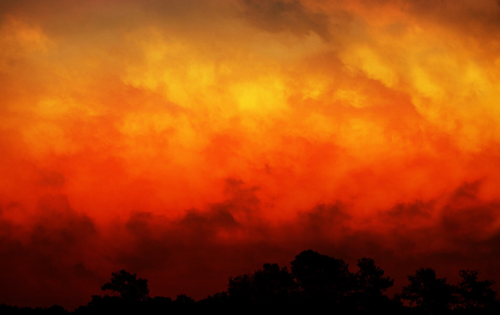 #freetoedit #background #halloween