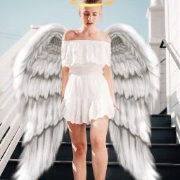 angel angelwings guardianangel halo freetoedit