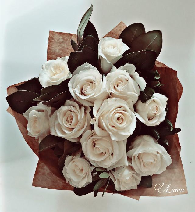 #freetoedit #whiteroses #ivoryeffect