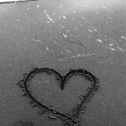 photography beachday blackandwhite sand oceanbreeze