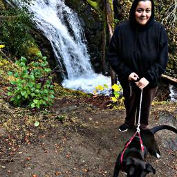 hikingadventures hikingtrail hikingbuddy hikingdog pnwpup