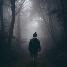 woods forest man men boy freetoedit