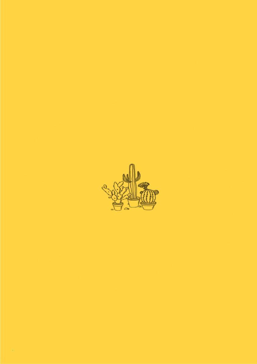 freetoedit yellow background cactus aesthetic