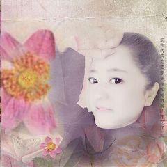 qingjingxin