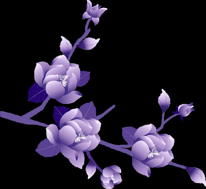 #flowers #flower #purple #purpleflowers #purpleasthetic #asethetic #kpop #kpopidol #kpopsticker #kpopflower #freetoedit