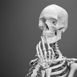 halloween skeleton freetoedit