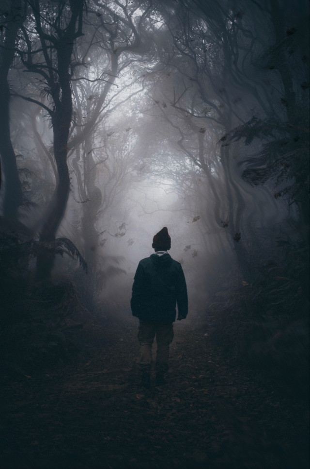 Sometimes you have to walk through the dark to get to the light. #calm #focus #brave #alone #nightmare #scary #walking #walkinthewoods #fearless #woods #night
